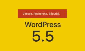 WordPress 5.5 : Les nouveautés de la mise à jour