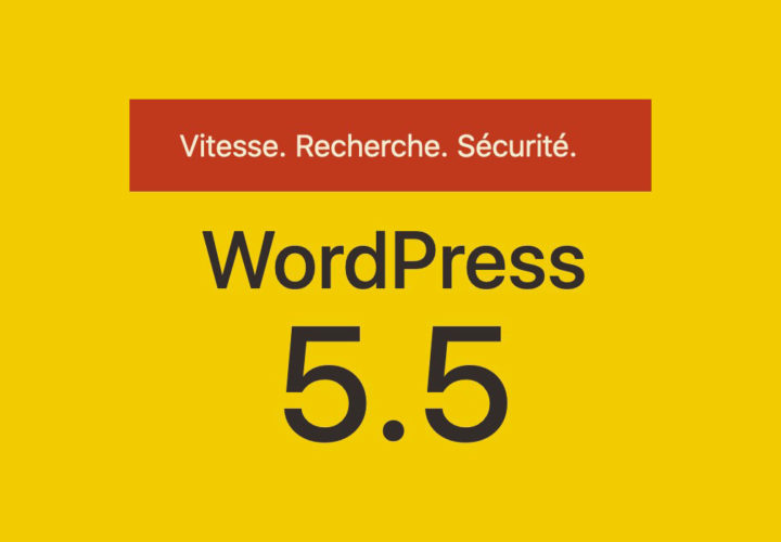 Wordpress 5.5: What's new in the update 12